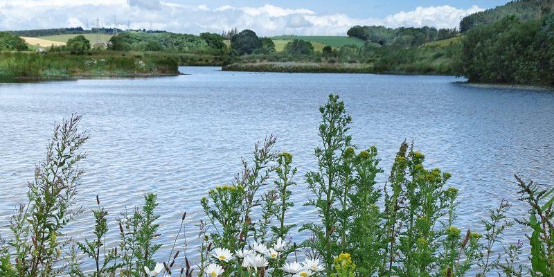 Branton Lakes