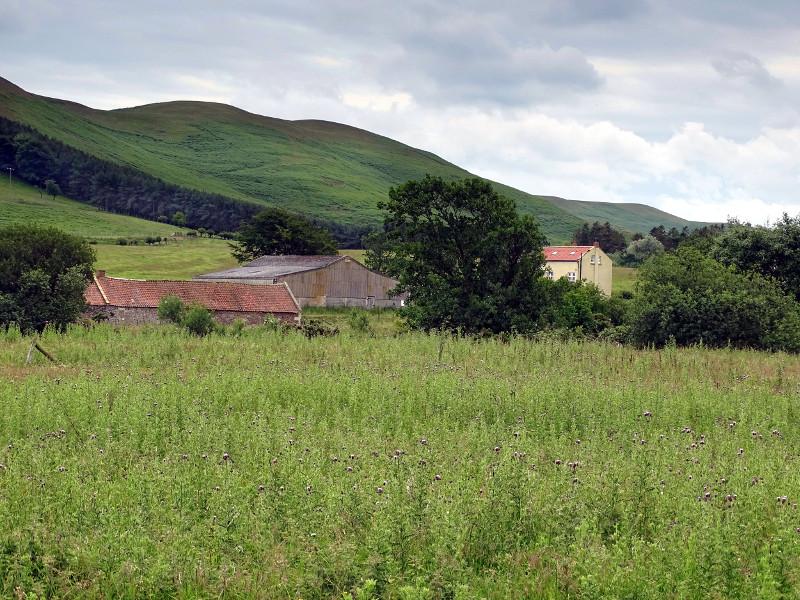 View towards Ingram Mill