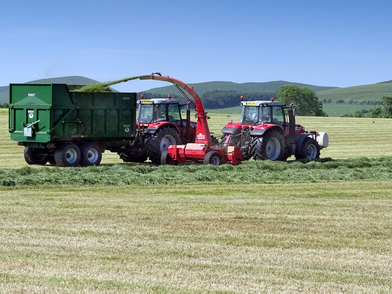 forage harvester and trailer