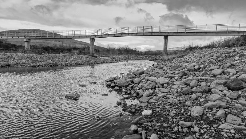 Branton footbridge DSC09905