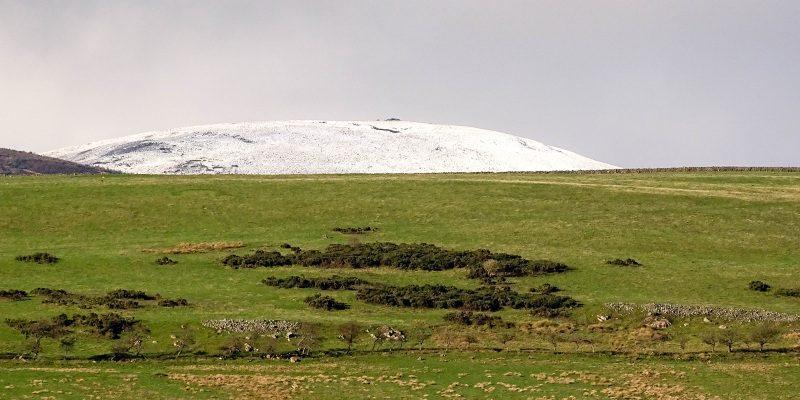 Cheviot Hills snow