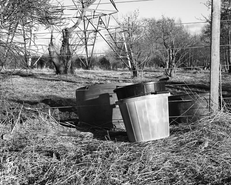 buckets DSC09696
