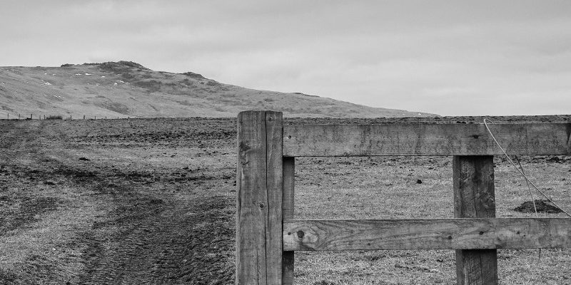 The furnished landscape 2