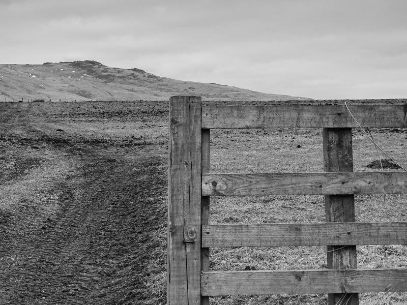 fence at Linhope DSC09235