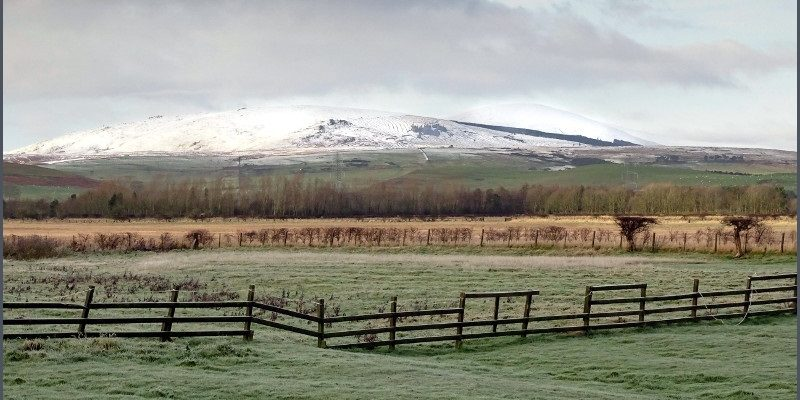 Cheviot snow