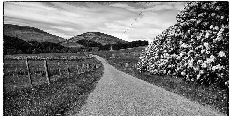 Vintage Valley