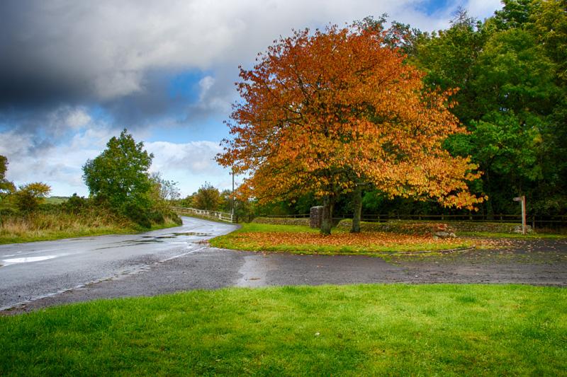 breamish-valley-autumn-5