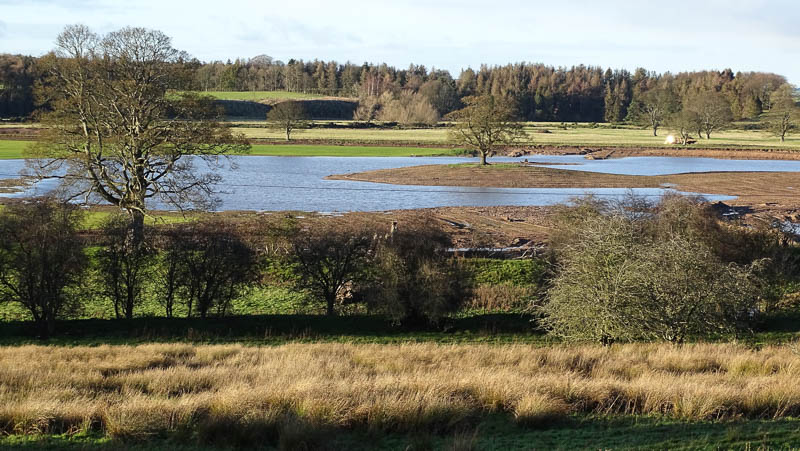 New lake at Hedgeley