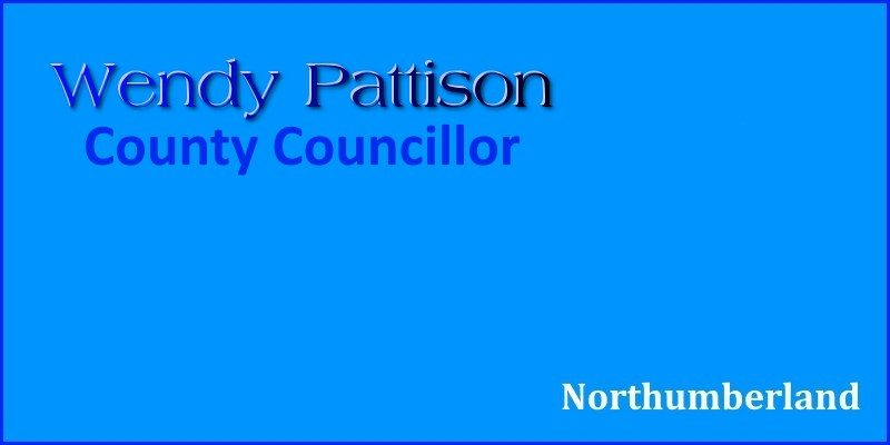 Wendy Pattison County Councillor