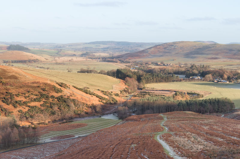 view towards Ingram from Brough Law