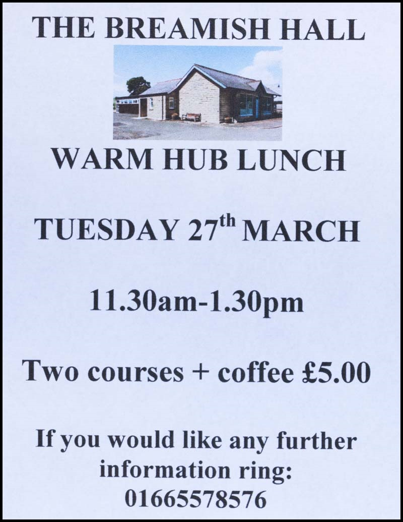 lunch club march 2018 poster