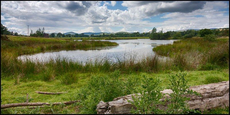 Hedgeley Lakes Summer 2017