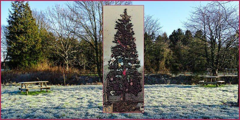 Oh, Christmas tree…