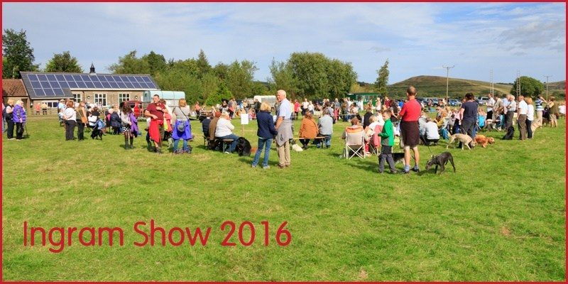 Ingram Show 2016 success