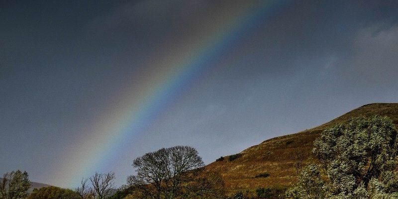 Rainbows at Reaveley