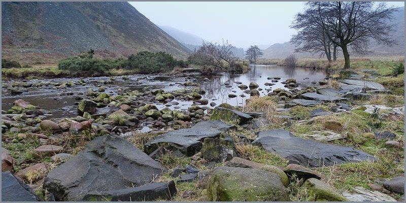 Along the Breamish Valley: 27 Oct 2015