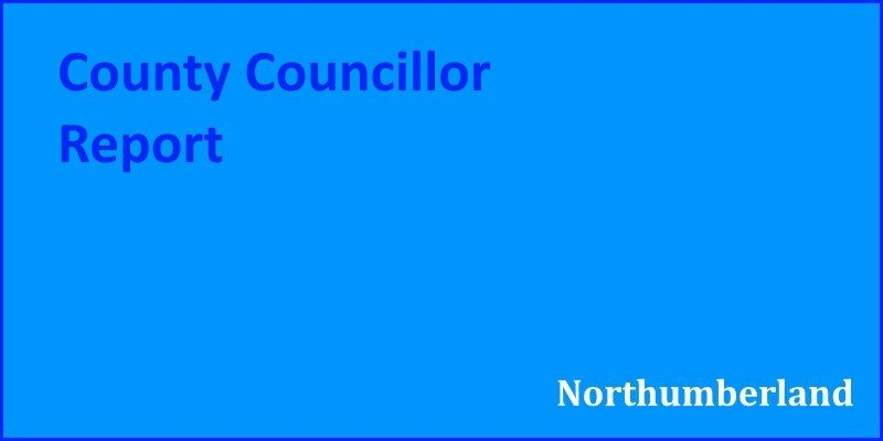 County Councillor Report (Oct-Nov 2018)