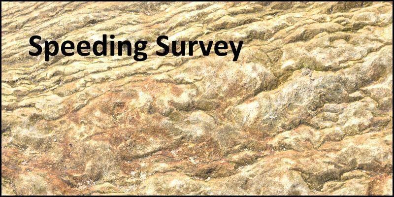 Speeding Survey to Begin