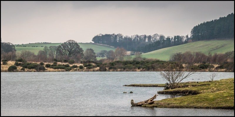 Grey day walk: Branton Lakes