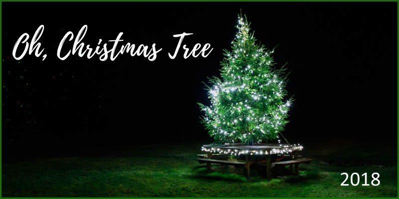 Oh,Christmas Tree 2018!