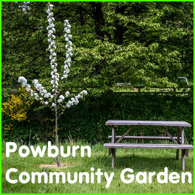 Powburn Community Garden badge