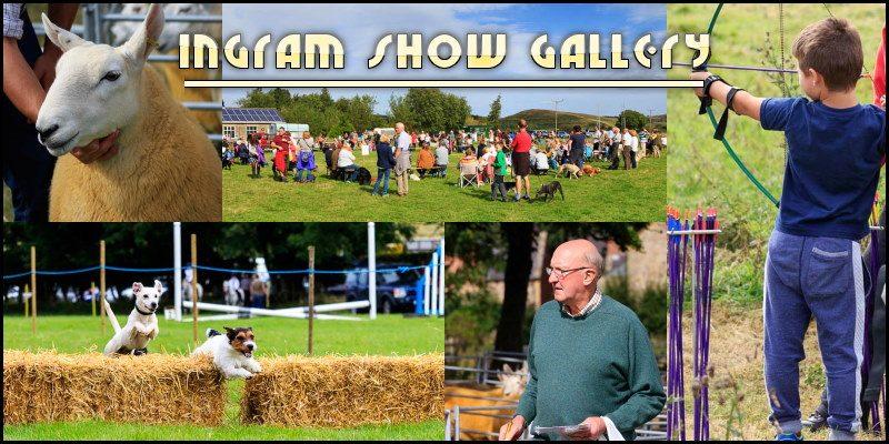 Ingram Show Gallery