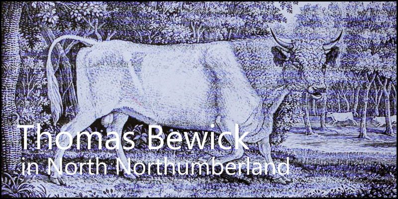 Thomas Bewick in North Northumberland