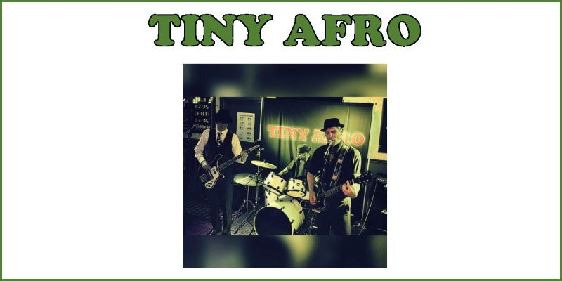 Tiny Afro 2019