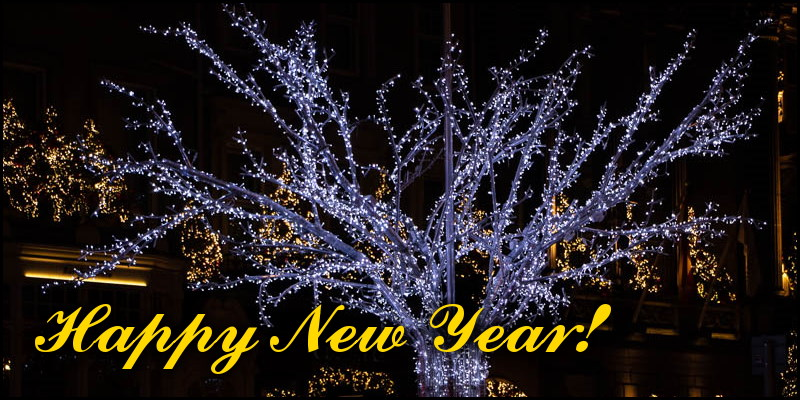 Fairy lights on a tree and the words 'Happy New Year'