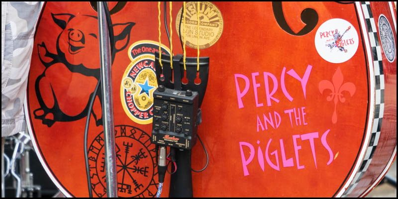 Percy and the Piglets 2019