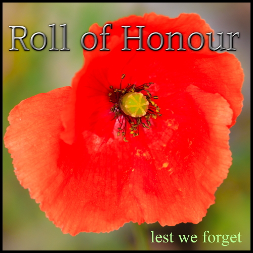 Roll of Honour button