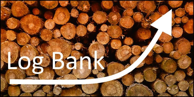 Log Bank Growth