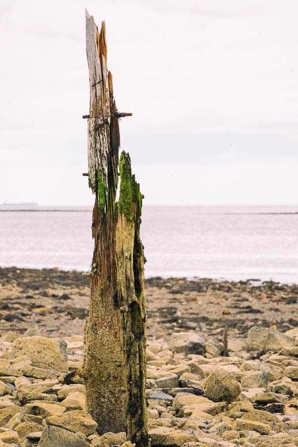Single wooden staithe at Holy Island