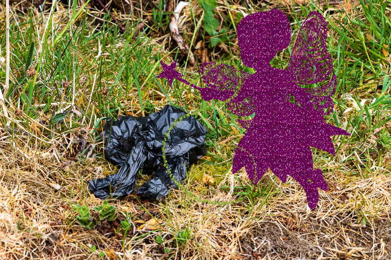 discarded dog poo bag