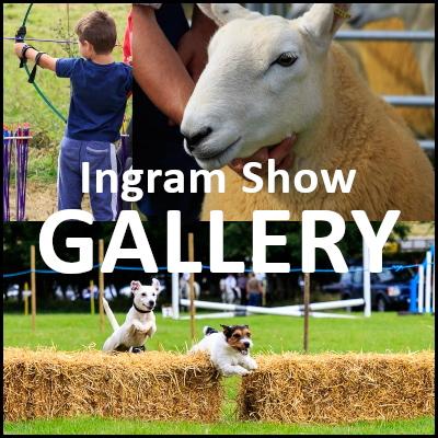 Ingram Show Gallery button