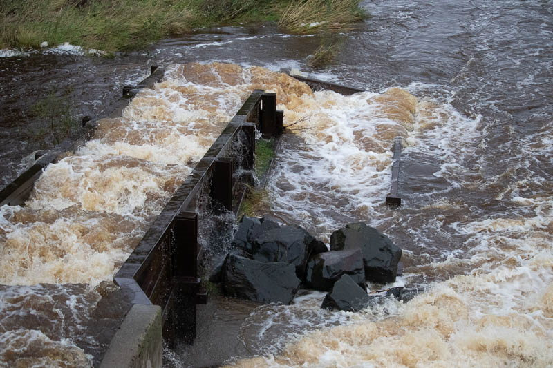 heavy water at fish ladder in Powburn