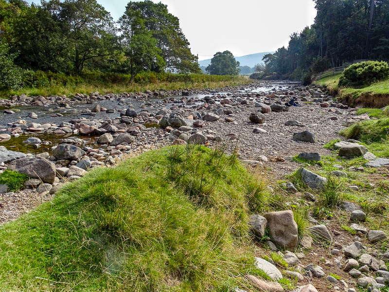 Bulby's Wood riverbank September 2014