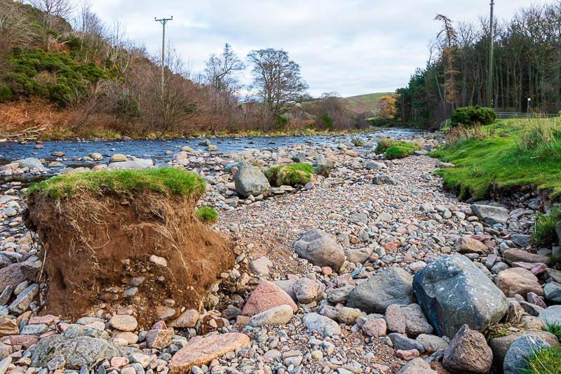 Bulby's Wood riverbank November 2020