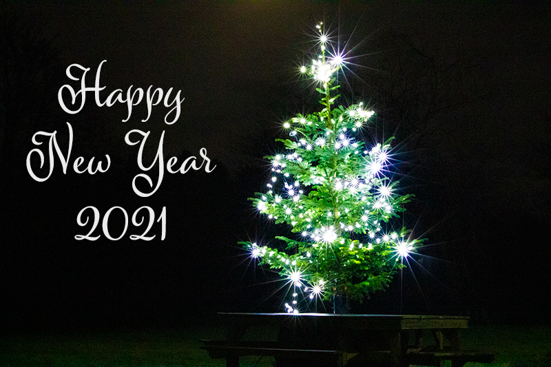 Happy New Year 2021 card showing a sparkling Christmas tree