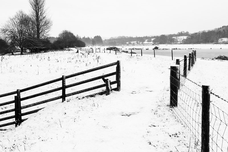 Photo of barbed wire fence in snow