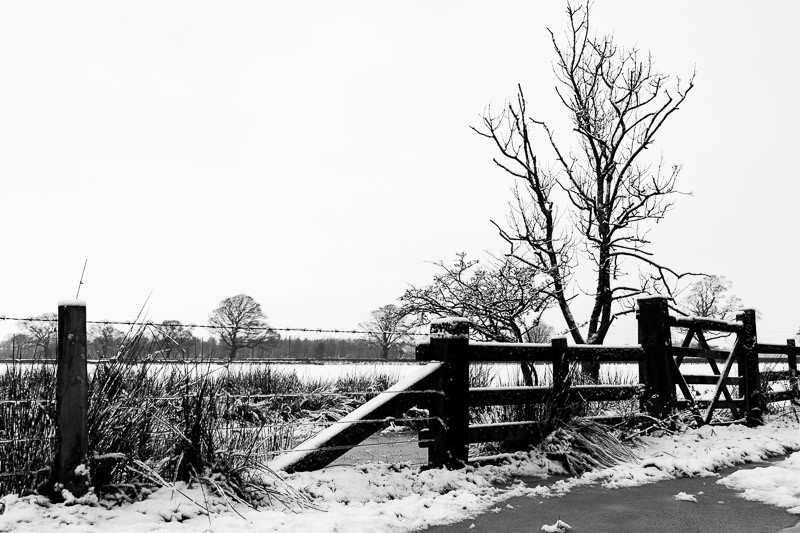 Photo of gate to a field in the snow