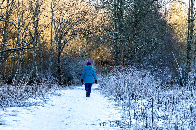 Photo of woman walking along snow covered woodland path