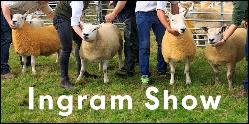 Ingram Show