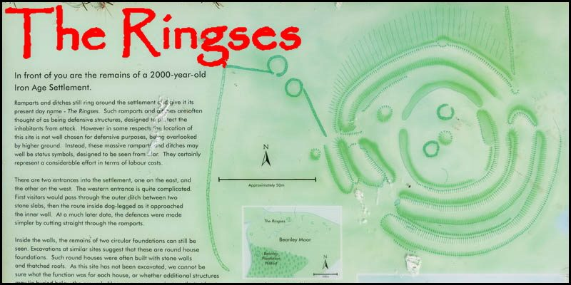 The Ringses