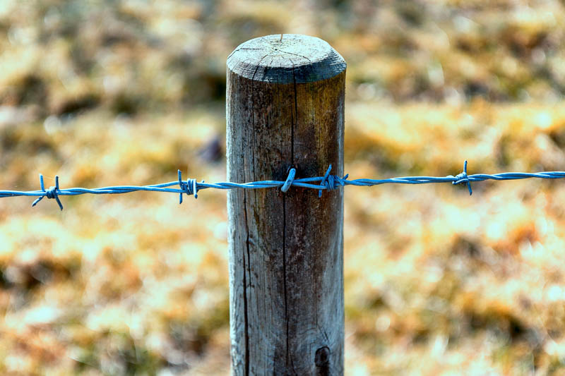 Photo of wooden fence post and barbed wire