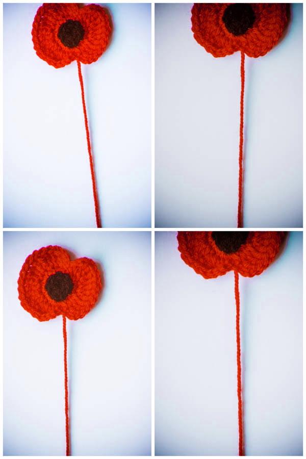 Montage of four woollen poppies