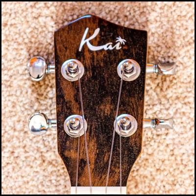 Photo of headstock of a tenor ukulele